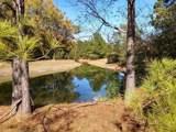 TBD White Oak Dr - Photo 18