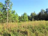 3.5 Acre Hwy 453 - Photo 4