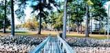 1101 Cypress Pointe - Photo 10