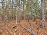 1307 Hidden Oak Drive - Photo 2