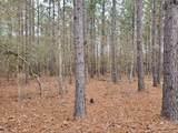 1307 Hidden Oak Drive - Photo 3