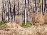 Lot 20 Hickory Landing Crt - Photo 10