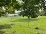 2605 Lizzie Creek Road - Photo 31