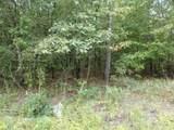 Lot 32 Hidden Oak Drive - Photo 4