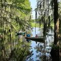189 Twisted Oak Trail - Photo 6