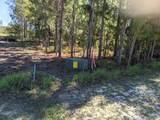 Lot 18 Twisted Oak Trail - Photo 4