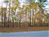 Lot 59 Sorin Cir - Photo 1