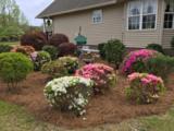 201 Plantation Dr - Photo 23