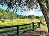 122 Twisted Oak Trail - Photo 4