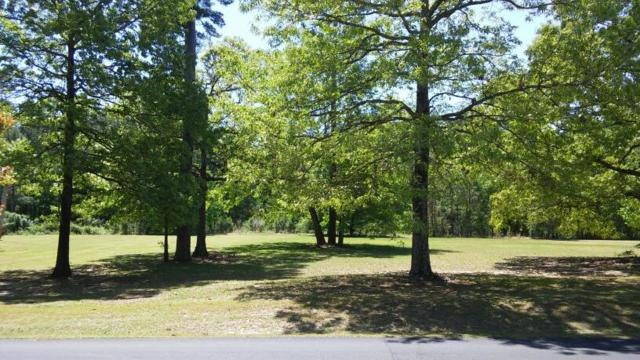 121 Woodlake Dr(C-40), Manning, SC 29102 (MLS #136236) :: The Litchfield Company