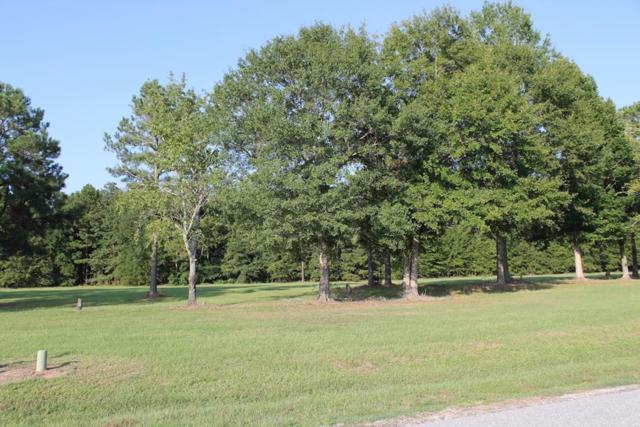 Lot 14 Palmetto Air Plantation, Manning, SC 29102 (MLS #136723) :: The Litchfield Company