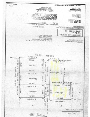 LOT#3,5 Round O Road, Eutawville, SC 29048 (MLS #137083) :: Gaymon Gibson Group