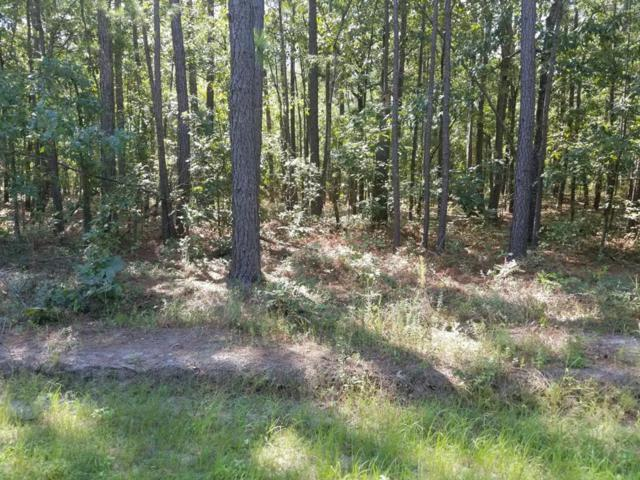 LOT#13 Round O Road, Eutawville, SC 29048 (MLS #137750) :: The Litchfield Company