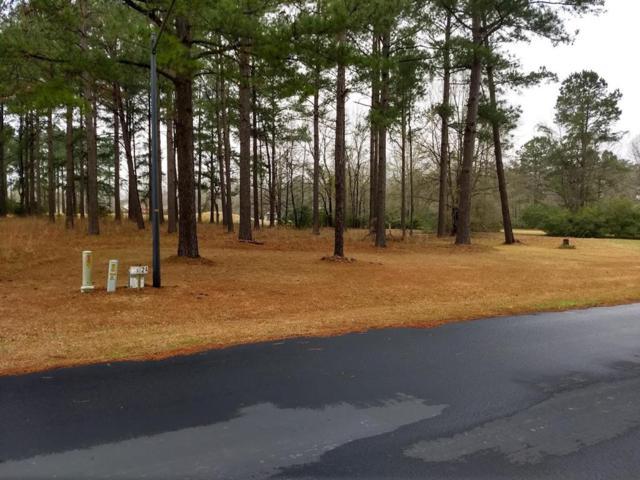 401 Pine Lake Ct, Manning, SC 29102 (MLS #139316) :: The Litchfield Company