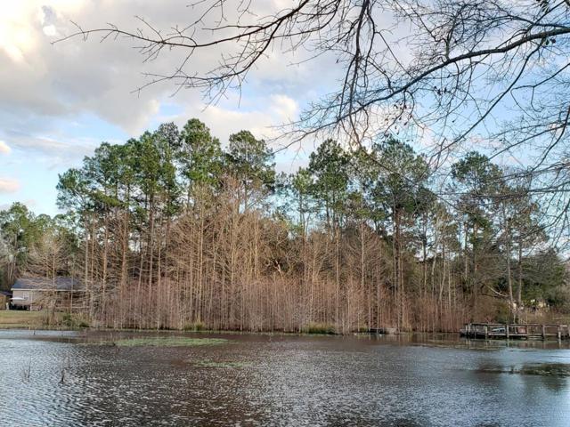 TBD Fountain Lake Drive, Eutawville, SC 29048 (MLS #139354) :: The Litchfield Company