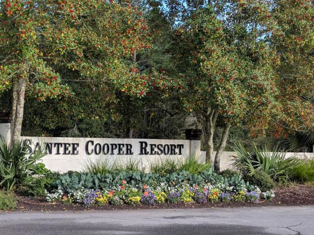 227 Cooper Drive, Santee, SC 29142 (MLS #139632) :: Gaymon Realty Group