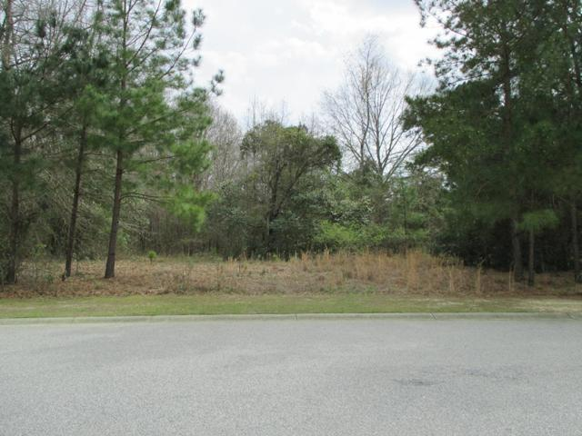 1245 Summit Dr, Sumter, SC 29150 (MLS #139681) :: The Litchfield Company