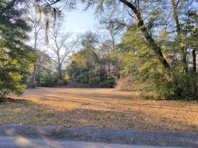 Lot 96 Laddie Dr, Summerton, SC 29148 (MLS #139889) :: The Latimore Group