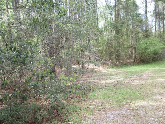 00 Wild Wood Lane, Elloree, SC 29047 (MLS #139899) :: Gaymon Gibson Group