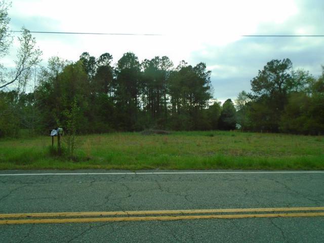 TBD Bloomville Hwy, Manning, SC 29102 (MLS #139938) :: Gaymon Gibson Group