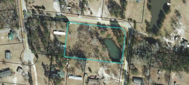 1133 Rockfish Drive, Manning, SC 29102 (MLS #140288) :: The Litchfield Company