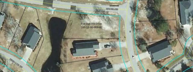 516 Oak Hill Dr, Manning, SC 29102 (MLS #140303) :: Gaymon Gibson Group