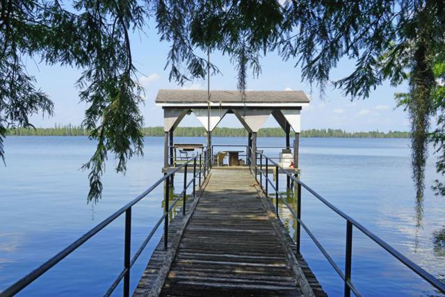 58 Pintail Ln, Elloree, SC 29047 (MLS #141256) :: Gaymon Gibson Group