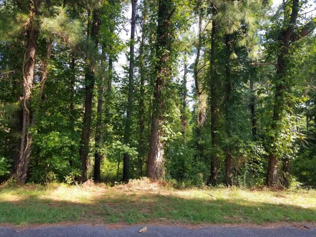 01 Dunham Road, Orangeburg, SC 29115 (MLS #141288) :: The Litchfield Company