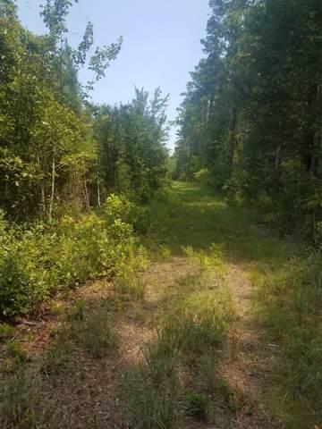 TBD Fire Hill Road, Walterboro, SC 29488 (MLS #141452) :: Gaymon Gibson Group