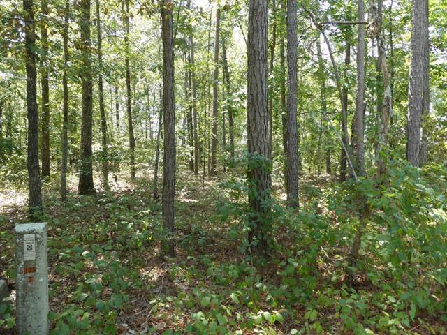 Lot 40 Sorin Circle, Elloree, SC 29047 (MLS #141564) :: The Litchfield Company