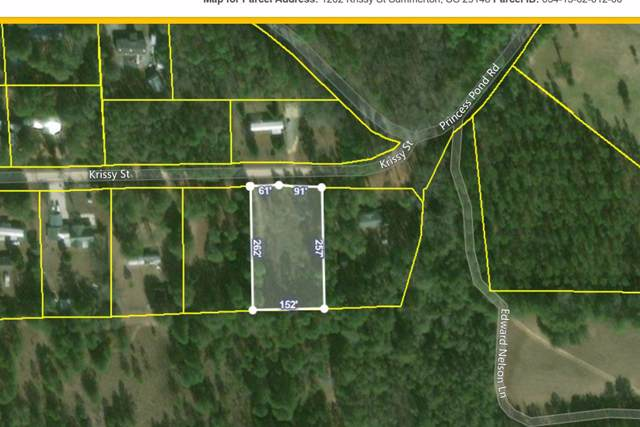 1202 Krissy St, Summerton, SC 29148 (MLS #141649) :: The Litchfield Company