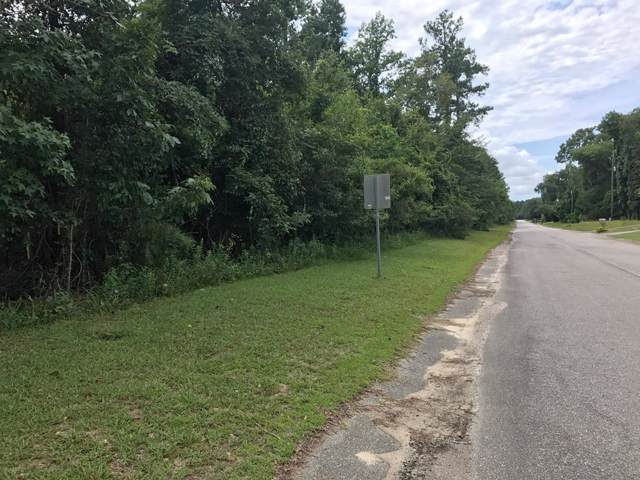 Lot 3 Ash Hill Drive, Eutawville, SC 29048 (MLS #141669) :: Gaymon Realty Group