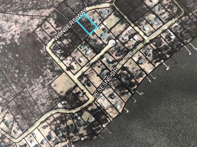 TBD Lot 39A Wonders Way, Manning, SC 29102 (MLS #141930) :: Gaymon Realty Group