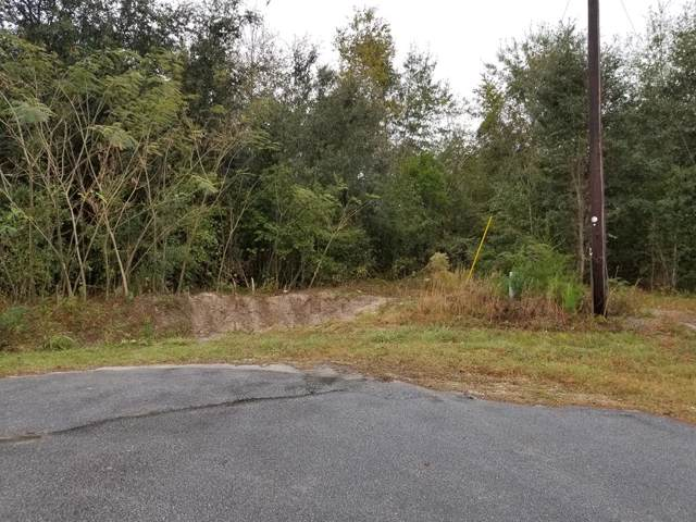 01 Sabrina Lane, Eutawville, SC 29048 (MLS #142498) :: Gaymon Gibson Group