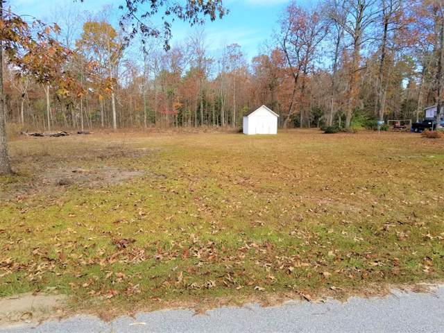 118 Canvasback, Eutawville, SC 29048 (MLS #142573) :: Gaymon Gibson Group