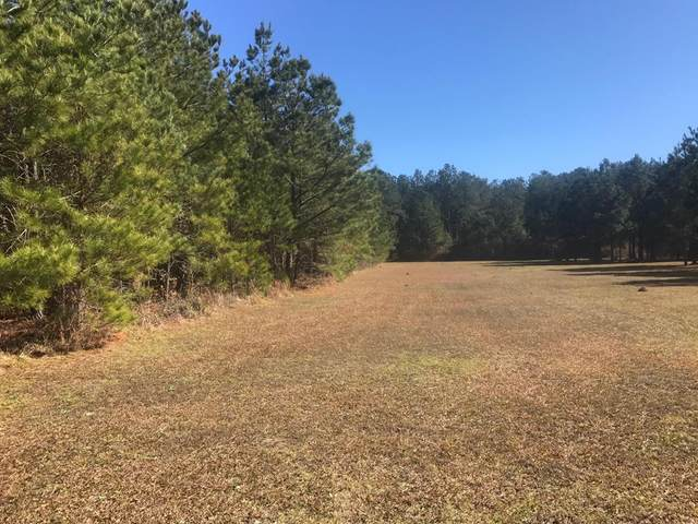 000 Mill Creek Road, Vance, SC 29163 (MLS #143168) :: Realty One Group Crest