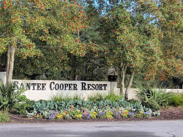 101 Cooper Circle, Santee, SC 29142 (MLS #143212) :: Gaymon Realty Group
