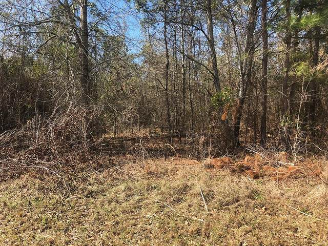 1251 Wadell St, Manning, SC 29102 (MLS #143243) :: Gaymon Realty Group