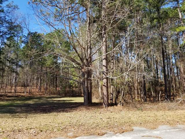 01 Sorin Circle, Santee, SC 29142 (MLS #143288) :: The Litchfield Company
