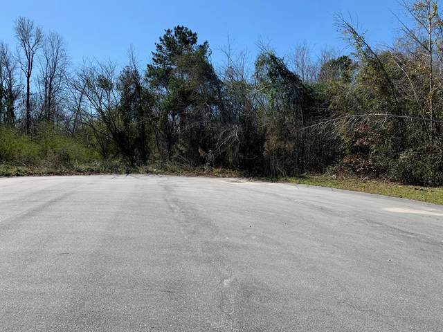 1402 Loblolly Drive, Manning, SC 29102 (MLS #143373) :: The Litchfield Company