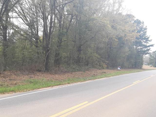 2425 Dingle Pond Rd, Summerton, SC 29148 (MLS #143544) :: The Litchfield Company