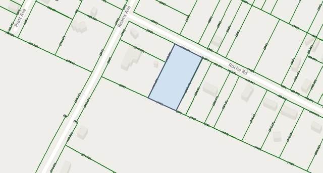 1800 Roche Rd, Sumter, SC 29153 (MLS #143771) :: The Litchfield Company
