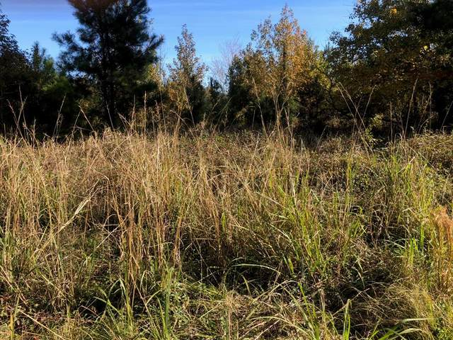 3715 Pinewood Rd, Sumter, SC 29154 (MLS #144011) :: The Litchfield Company