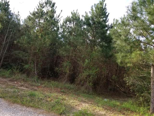 470 Lee, Sumter, SC 29150 (MLS #144132) :: The Litchfield Company