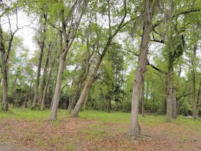 00 Hwy 6, Elloree, SC 29142 (MLS #144165) :: The Litchfield Company