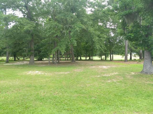 608 Fern Oak Ct, Manning, SC 29102 (MLS #144217) :: The Litchfield Company