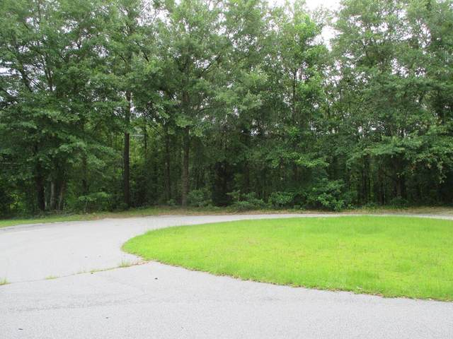 40 Crowndale Ct, Sumter, SC 29150 (MLS #144348) :: The Litchfield Company