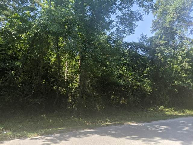 Lot 17 Canvas Back Drive, Eutawville, SC 29048 (MLS #144607) :: Gaymon Realty Group