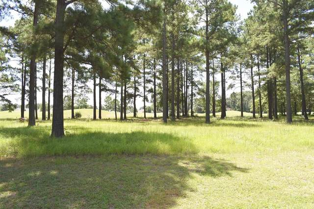 419 Pine Lake Ct., Manning, SC 29102 (MLS #144774) :: The Litchfield Company