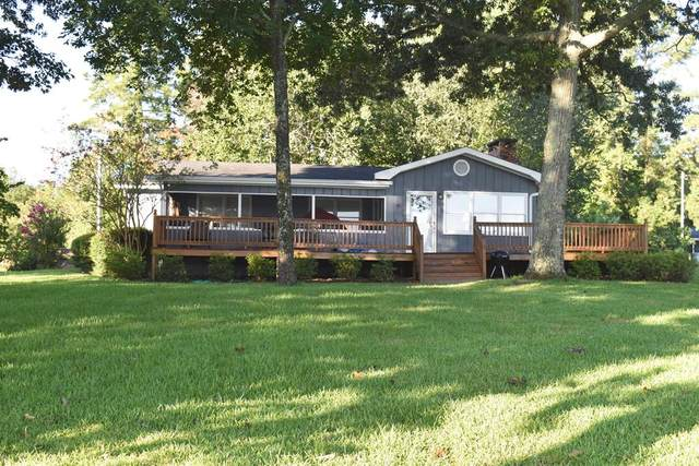 1087 Lakeview Dr., Manning, SC 29102 (MLS #144942) :: The Litchfield Company